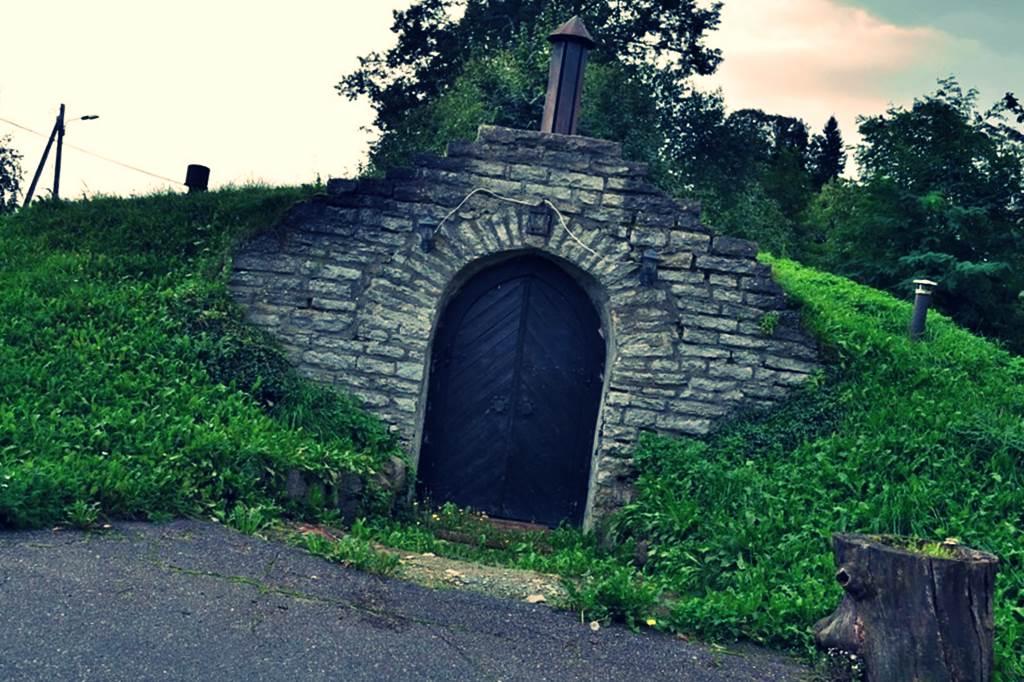 сколько фото земляного погреба интерьере дома